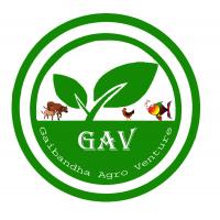 Gaibandha Agro Venture