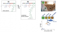 "Detection and quantification ""in situ"" of mercury, copper and nitrites in water and food products using a polymeric detector"